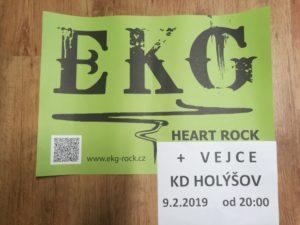 EKG + VEJCE Holýšov 9.2.2019